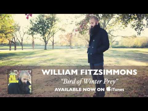 William Fitzsimmons - Bird of Winter Prey [Audio]