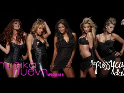 Pussycat dolls when i grow up (digital dog remix urban)
