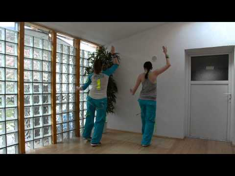 Aneela - Money Money  - Zumba Choreography by Nici + Ivi