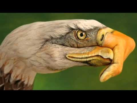 The Eagles- DESPERADO-HD